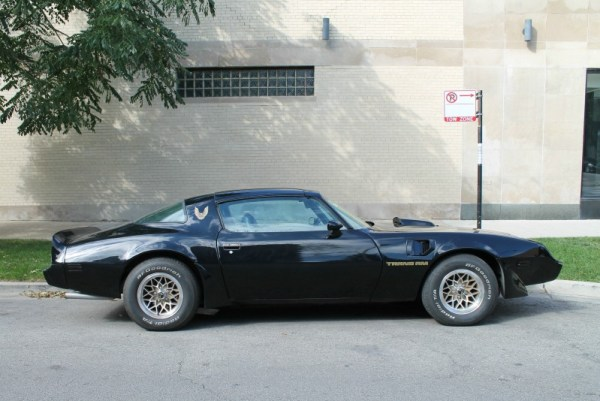 1981 Pontiac Firebird Trans Am, passenger's side view