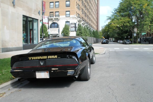 1981 Pontiac Firebird Trans Am, rear three-quarter view