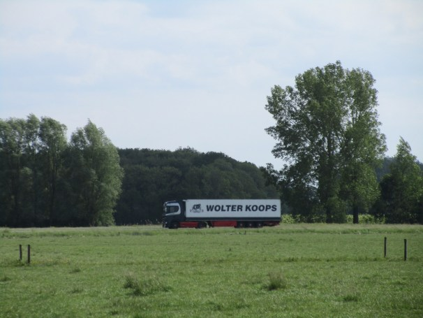 Scania Koops