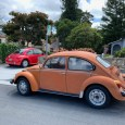 Early last year we were visiting our son in a nearby town and went for a stroll in his neighborhood, when I spotted this (Super?) Beetle. Nothing really special, not […]