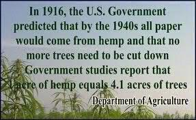 Image result for hemp can replace wood