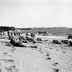 Opération Tigre : Préparation pour le Débarquement !