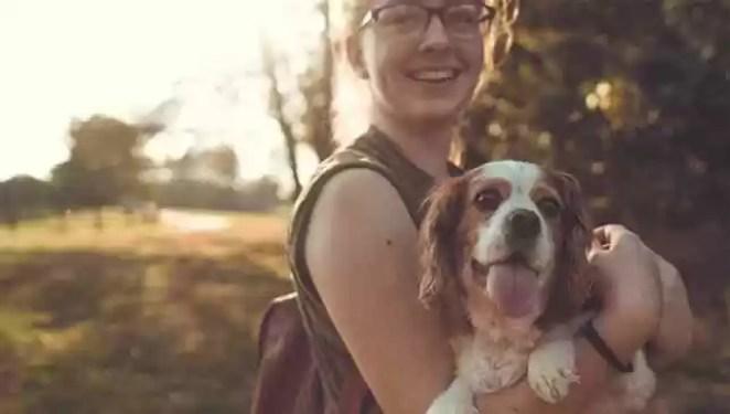 ter cão reduz risco de morte