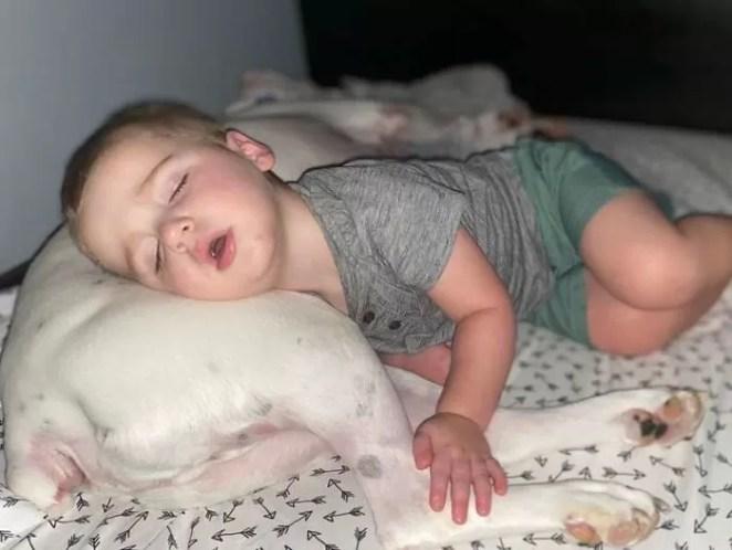 Câmera flagra garotinho fugindo da cama para dormir