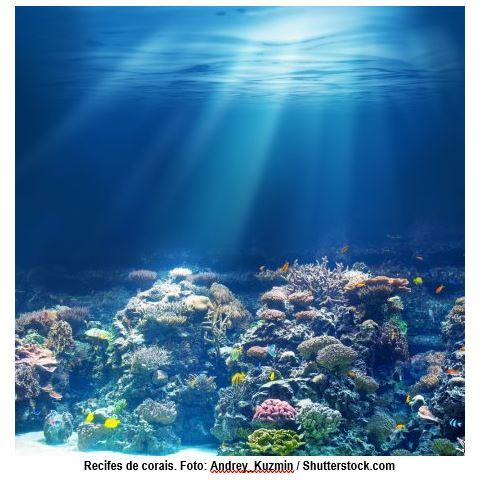 Recifes de Corais