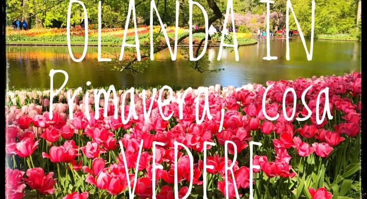 Olanda in primavera