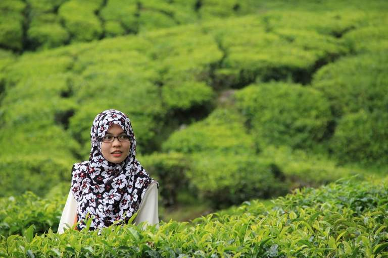 Hiyab o burka: un veto o dos ovarios