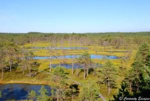 Parc National de Lahemaa en Estonie