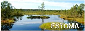 articles about Estonia