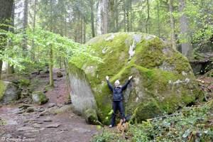 Sentier dans la forêt aux chutes de Triberg