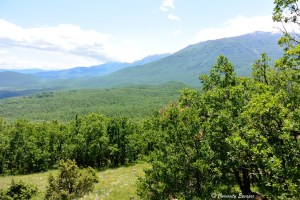 Verdure et grand air en Macédoine