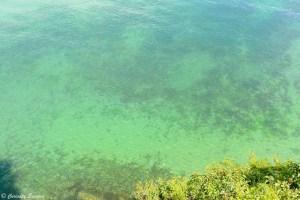 Eau du lac Ohrid