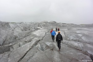 Randonnée sur le glacier Svinafellsjokull