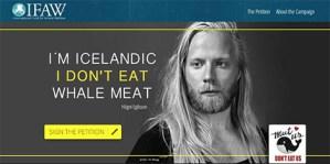 Campagne viande de baleine, Islande
