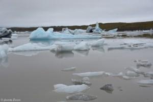 Bouts du glacier Fjallsarlon