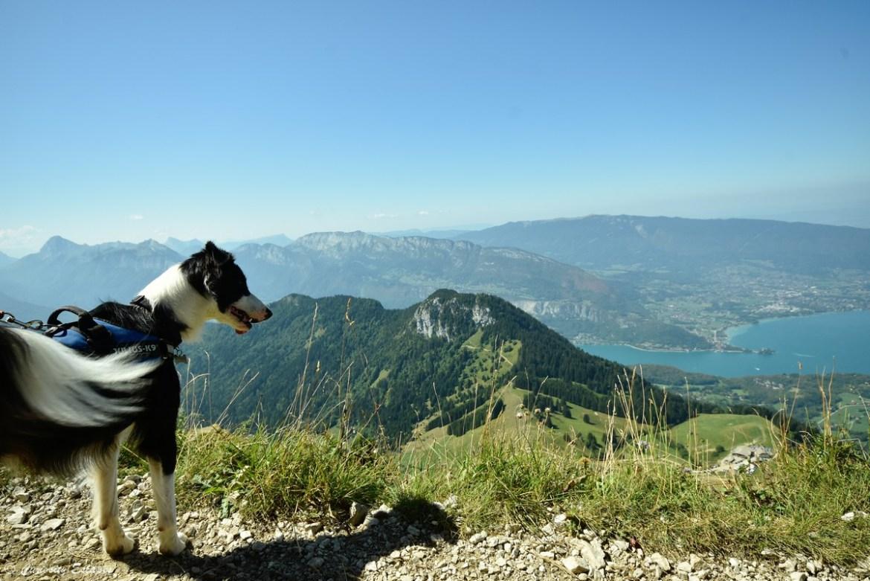 Lac d'Annecy vu depuis la Tournette