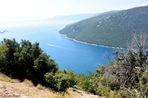 Paysage en Istrie croate