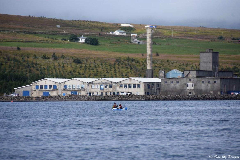 Usine de séchage du hareng en Islande