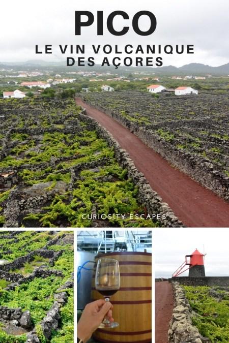 Le vin volcanique des Açores sur l'île de Pico