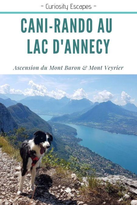 Cani-rando au lac d'Annecy: Mont Baron & Mont Veyrier