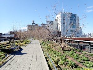 High Line Park, New-York