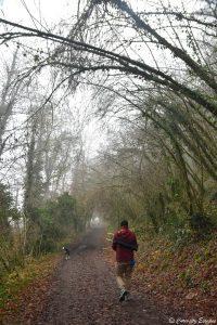 Sentier qui mène à la cascade de la Roche