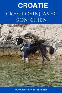 Voyager dans les îles croates avec son chien: Cres et Lošinj dans le Kvarner