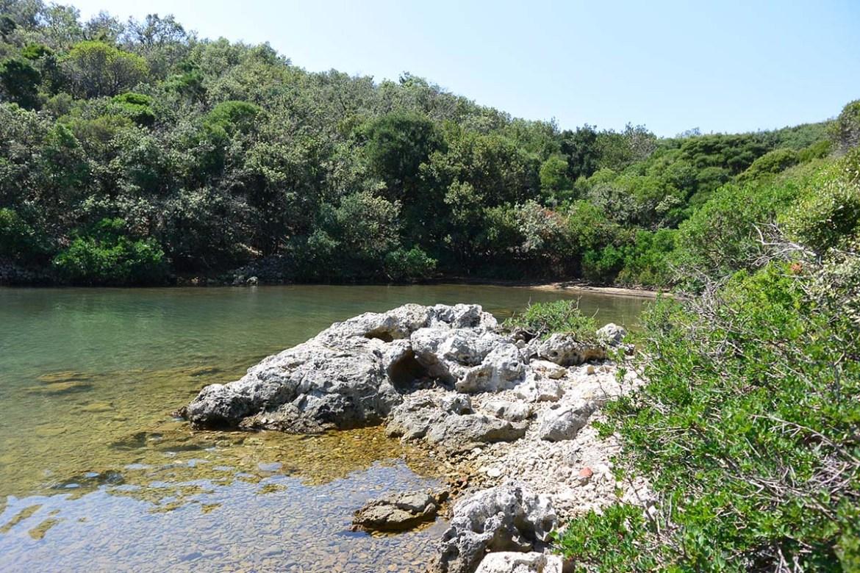 Crique sauavge en bord de forêt sur l'île de Cres, Croatie