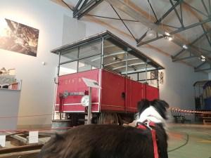 Musée du train à Tournon avec son chien
