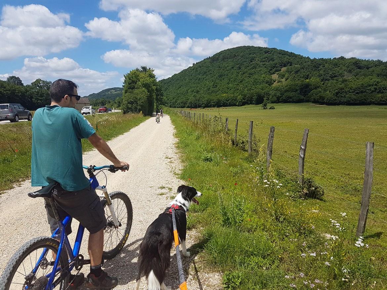 Avec le chien sur la Voie Verte