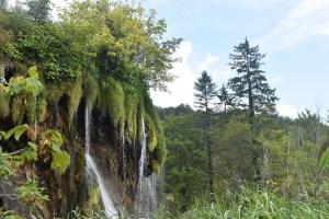 Cascade de tuf aux lacs de Plitvice
