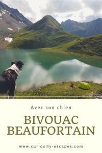 Faire du bivouac avec son chien dans le Beaufortain, Savoie