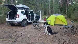 Faire du camping en Suède avec son chien