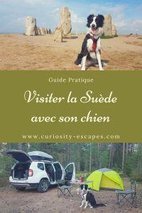 Voyager avec son chien, tous les conseils pour organiser son road trip en Suède