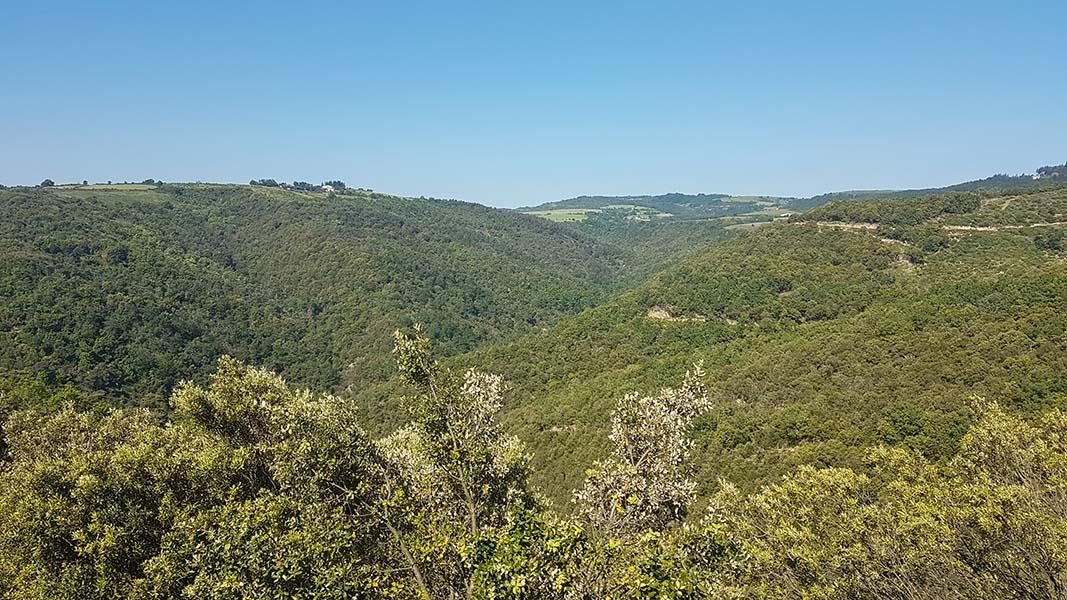 La côte du Pin en Ardèche