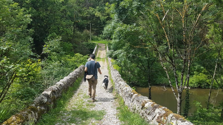 Sentier à Saint Sylvestre, Ardèche
