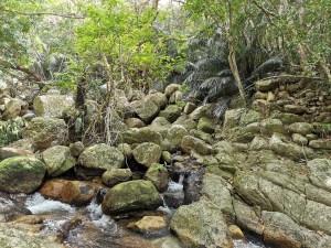 Cascade Arakawa sur Ishigaki, Japon