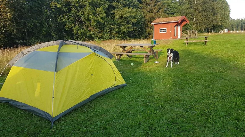 Camping à la ferme en Suède