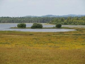 Lac au parc national Store Mosse, Suède