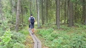 Randonnée dans le parc national de Store Mosse, Suède