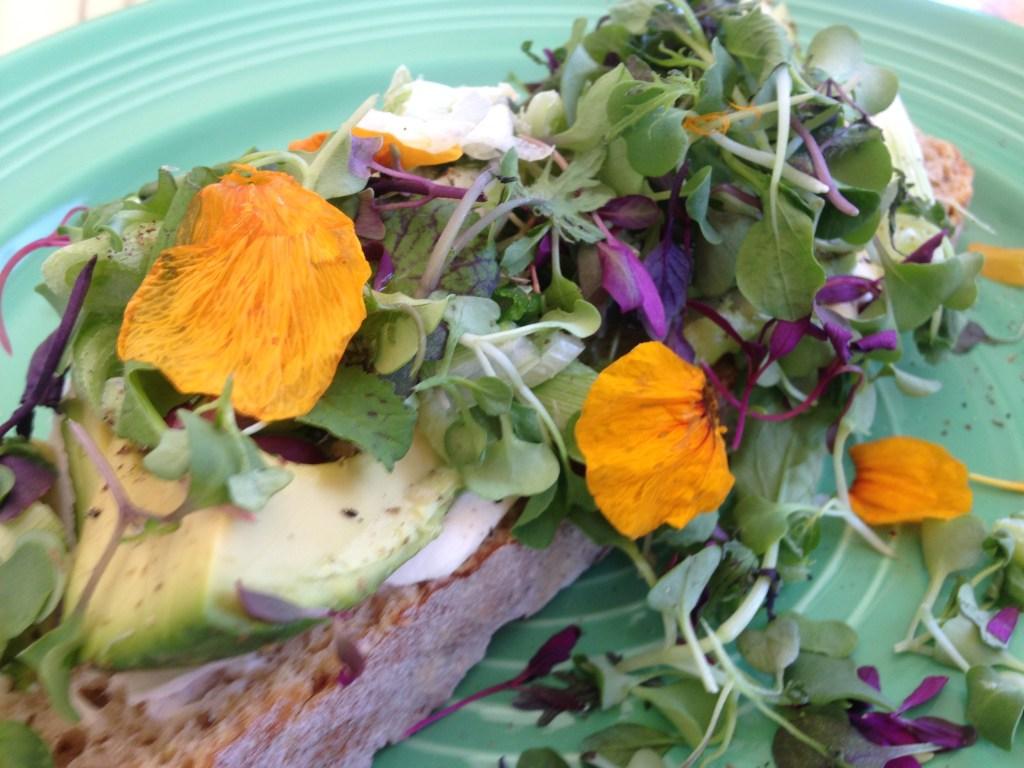 avocado toast california
