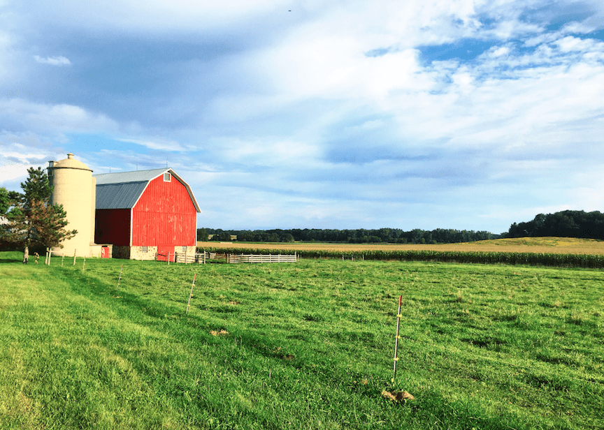 red barn midwest