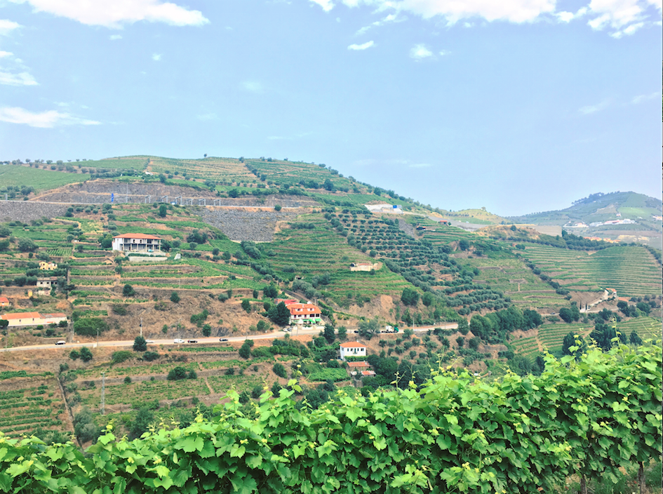 douro valley driving portugal
