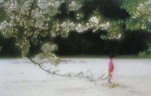 Shoij Ueda fotografo