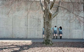 Kanako Sasaki fotografo