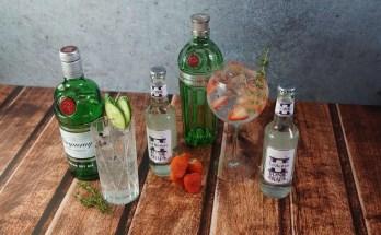 gin piu buoni al mondo