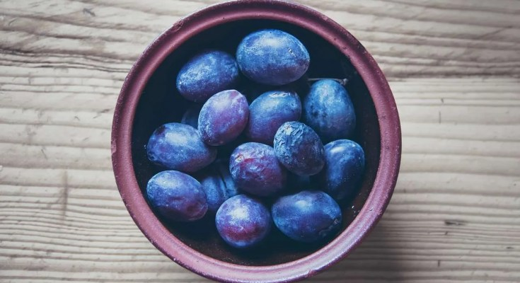 Rosolio di prugne nere ricetta