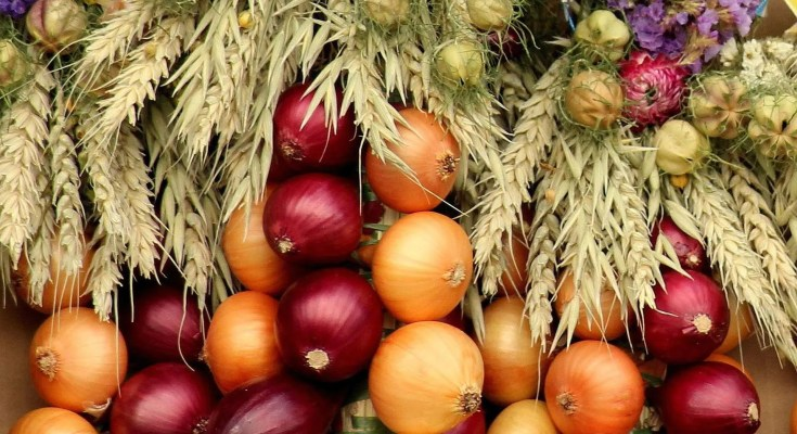 Cipolline in agrodolce ricetta