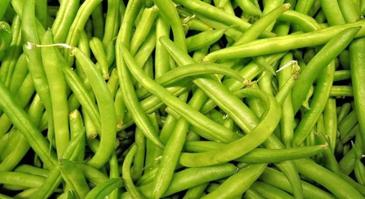 Fagiolini in agrodolce ricetta