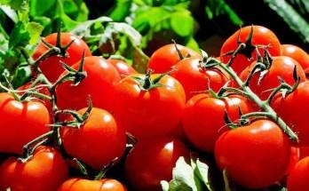 Pomodorini sciroppati ricetta